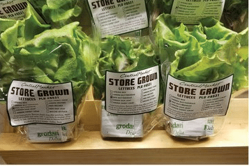 Grocer uses LED lighting for store-grown produce